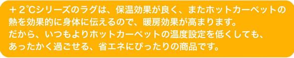 アスワン ラグマット(秋・冬)ヒートウール【+2℃/防ダニカーペット】の説明文画像