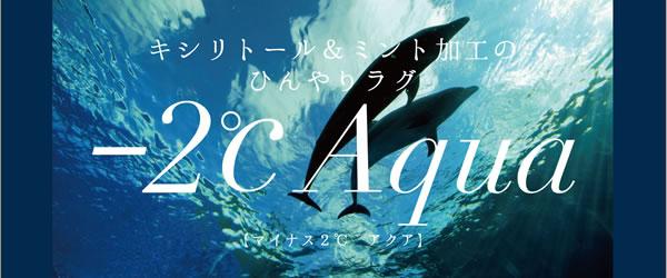 クールラグマット -2℃アクア AQ-100【春・夏用/おしゃれ】