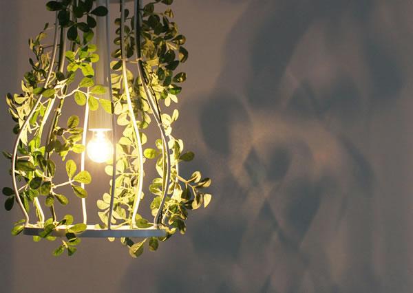 ディクラッセ(DI CLASSE)パティオ ペンダントランプ【照明/グリーン/北欧/おしゃれ】の使用画像