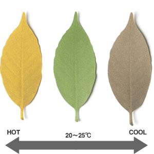 アッシュコンセプト リーフ(leaf)D-710 各種【インテリア雑貨】の色変化説明画像