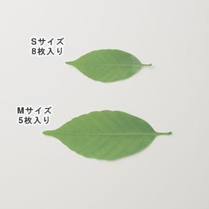 アッシュコンセプト リーフ(leaf)D-710 各種【インテリア雑貨】のサイズバリエーション画像