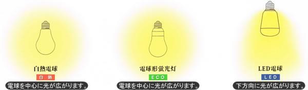 白熱球・電球形蛍光灯・LED電球それぞれの光の広がり方画像