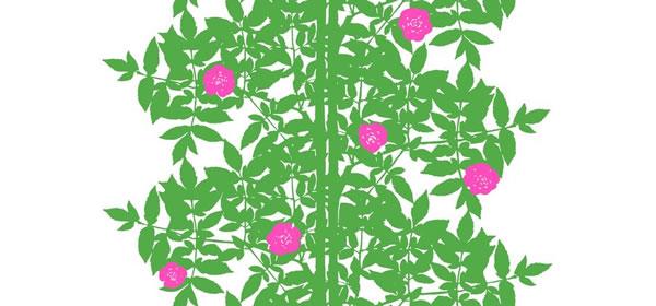 マリメッコ(marimekko)ルースプー(Ruusupuu)ライムグリーンの生地(ファブリック)全体画像