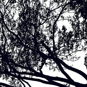 マリメッコ(marimekko)トゥーリ(TUULI)ブラックの生地(ファブリック)詳細画像