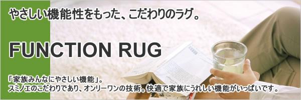 ラグマット カルル(CaRuRu)フィルメ【洗える/小さく畳める/大幅軽量化】