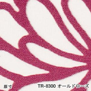 TOSO(トーソー) ロールスクリーン ハグミ TR-8300の詳細画像