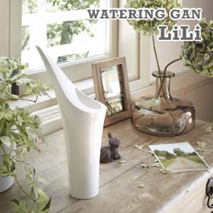 水差し リリ【ジョーロ/おしゃれ/観葉植物】ホワイトの使用画像